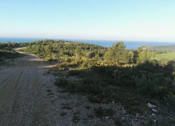 Mon Trail bandolais